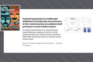 nature neuroscience paper